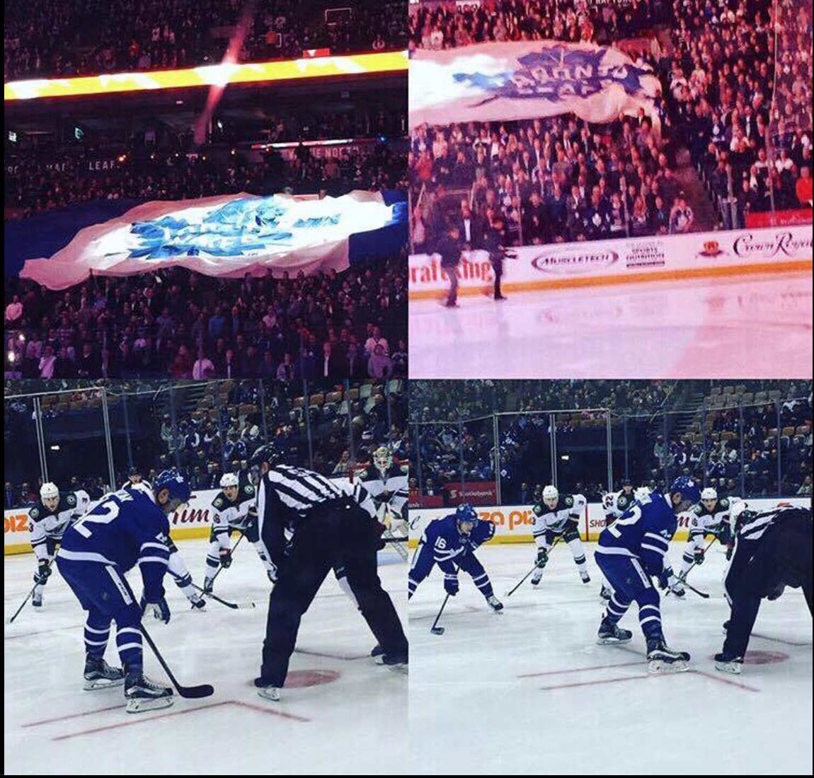 Amazing Night at Leafs Game